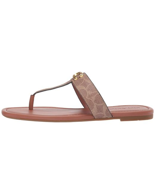 aac49d25b4d ... COACH - Brown Jessie Thong Sandal With Signature Buckle (black Leather)  Women s Sandals ...
