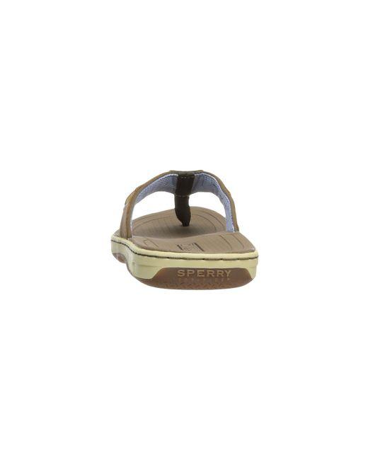 c9ee361b343 ... Sperry Top-Sider - Baitfish Thong (brown) Men s Sandals for Men ...