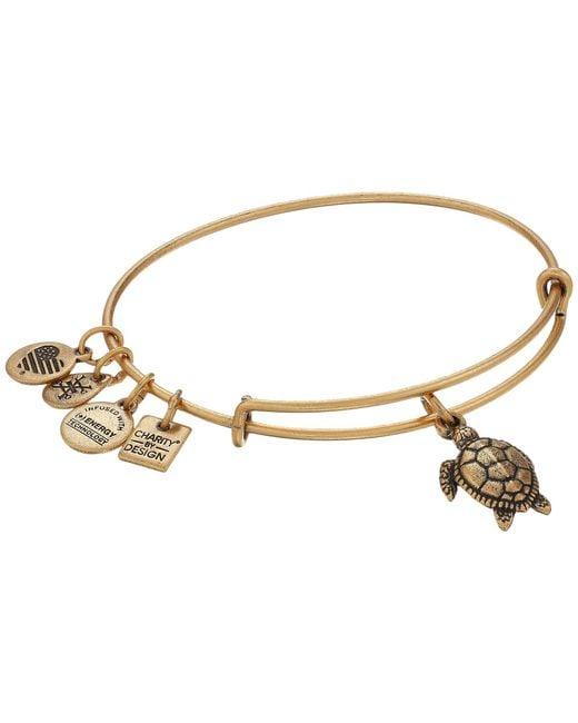 ALEX AND ANI - Metallic Charity By Design Turtle (rafaelian Silver) Bracelet - Lyst