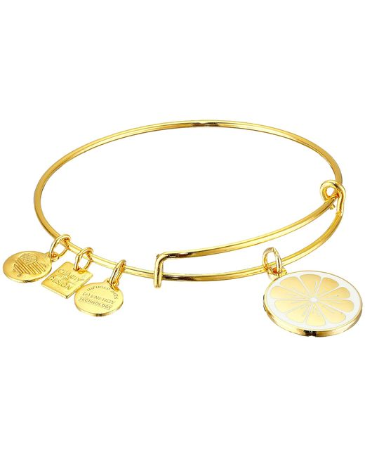ALEX AND ANI | Metallic Charity By Design Zest For Life Ii Charm Bangle | Lyst