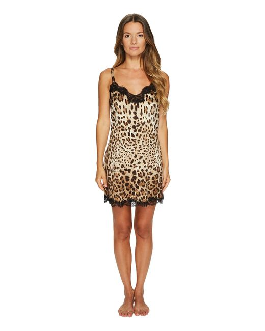 Dolce & Gabbana   Natural Stretch Silk Lace Cheeta   Lyst