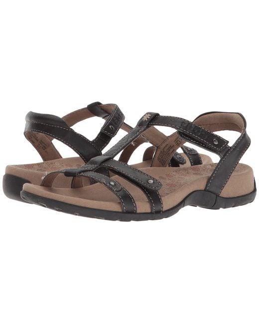 Taos Footwear - Black Trophy (dove Grey (prior Season)) Women's Sandals - Lyst
