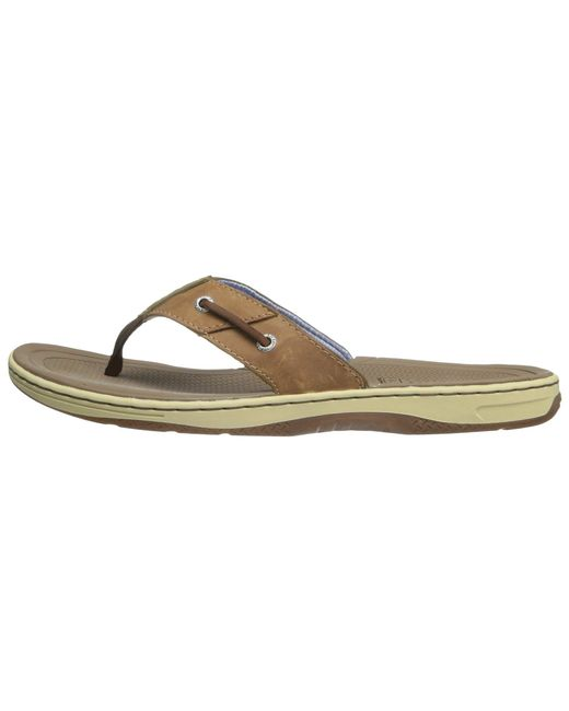 44cf4d9844b ... Sperry Top-Sider - Baitfish Thong (brown) Men s Sandals for Men ...