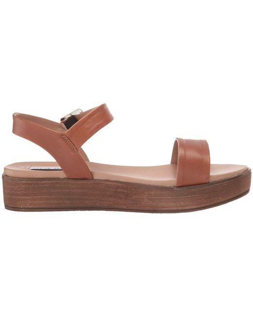 0d6c3fd60172 ... Steve Madden - Brown Aida-1 Platform Sandal (black Leather) Women s  Shoes ...