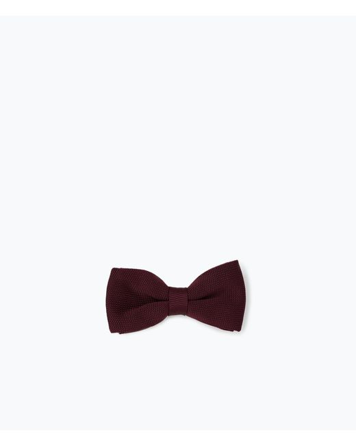 Zara | Blue Knitted Bow Tie for Men | Lyst