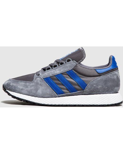 adidas Originals Men's Blue Forest Grove