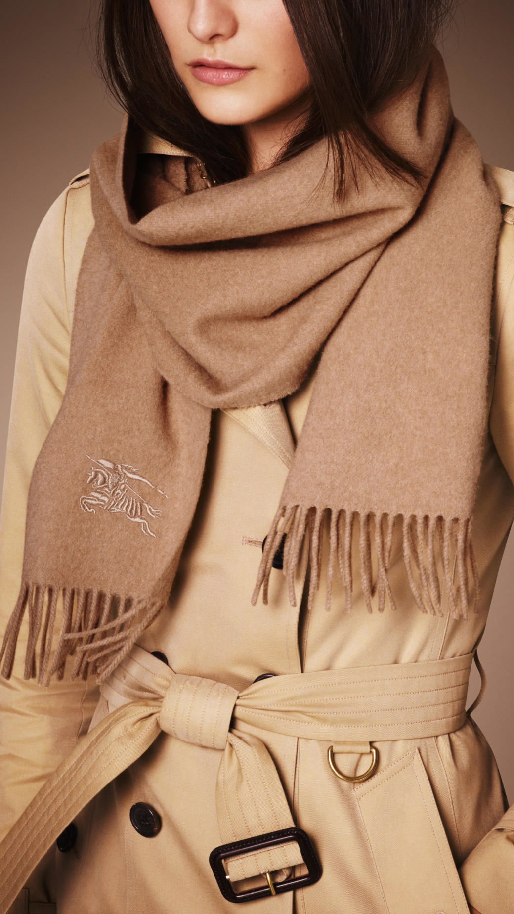 Burberry Heritage Cashmere Scarf in Natural - Lyst fdc0b1ae58c51