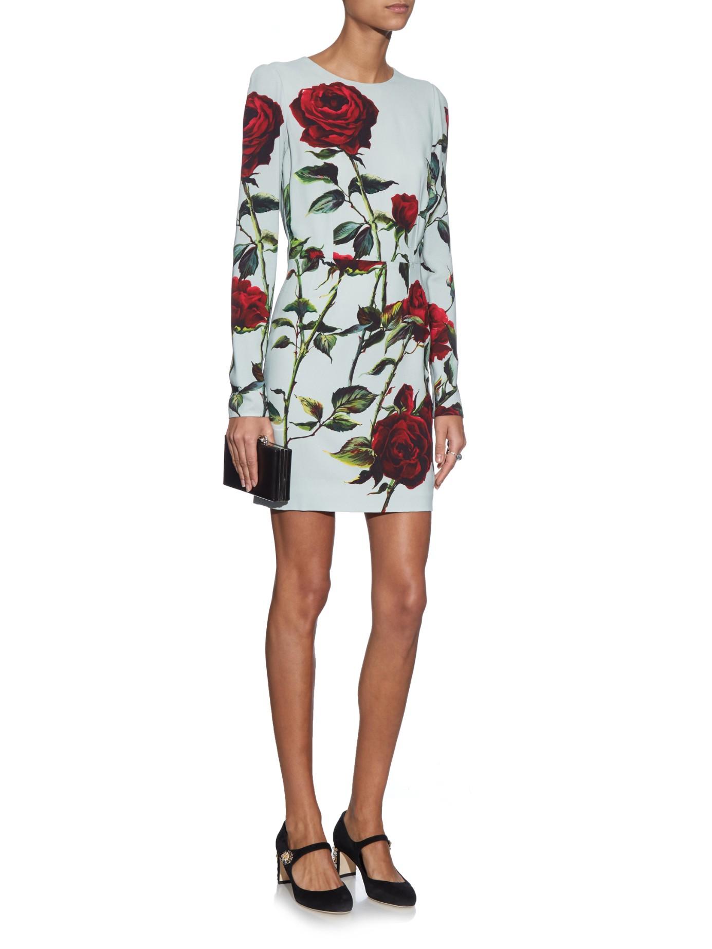 Floral-print Cady Dress - Blue Dolce & Gabbana ViRgvuUMGn