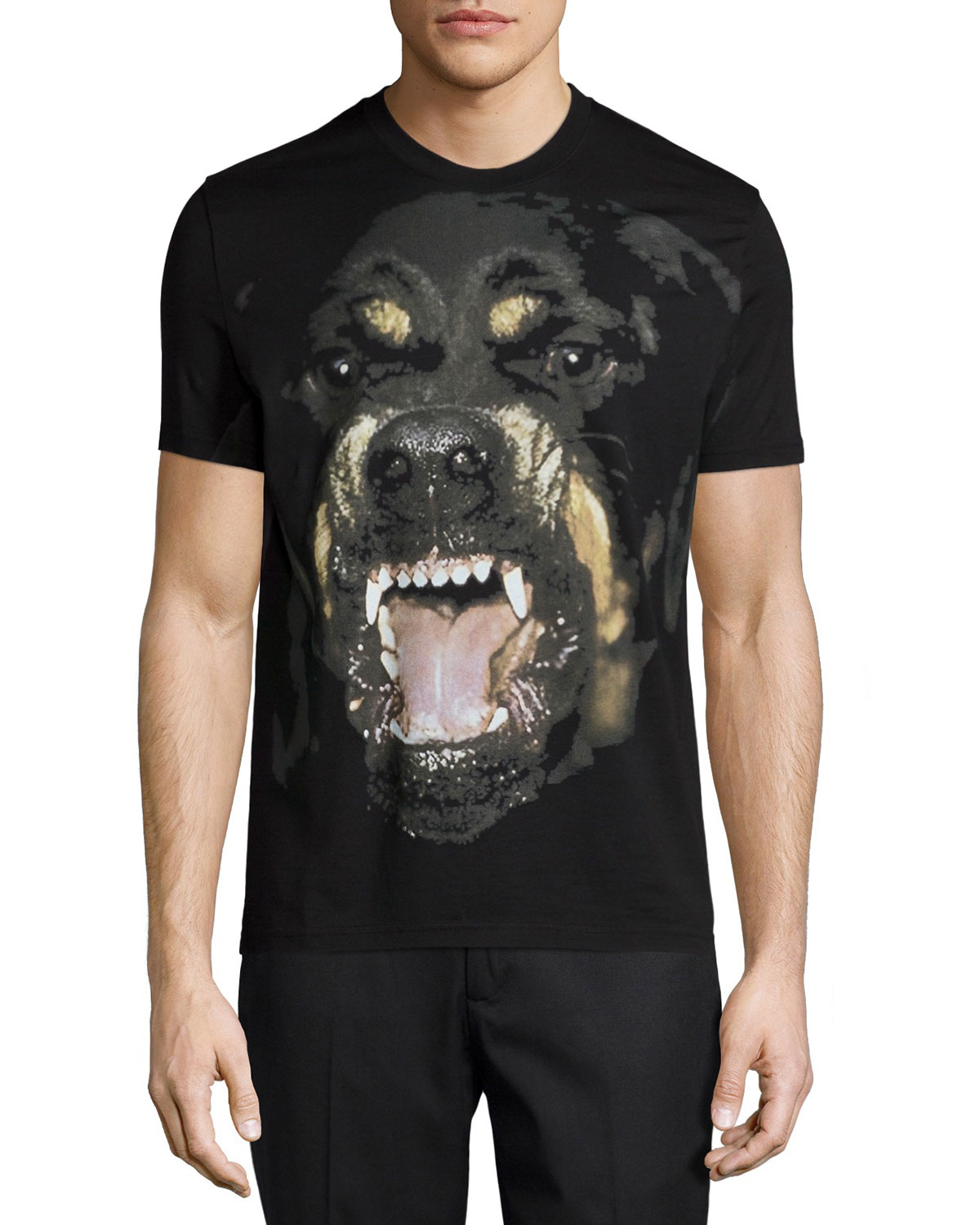 givenchy rottweiler short sleeve graphic tee in black for