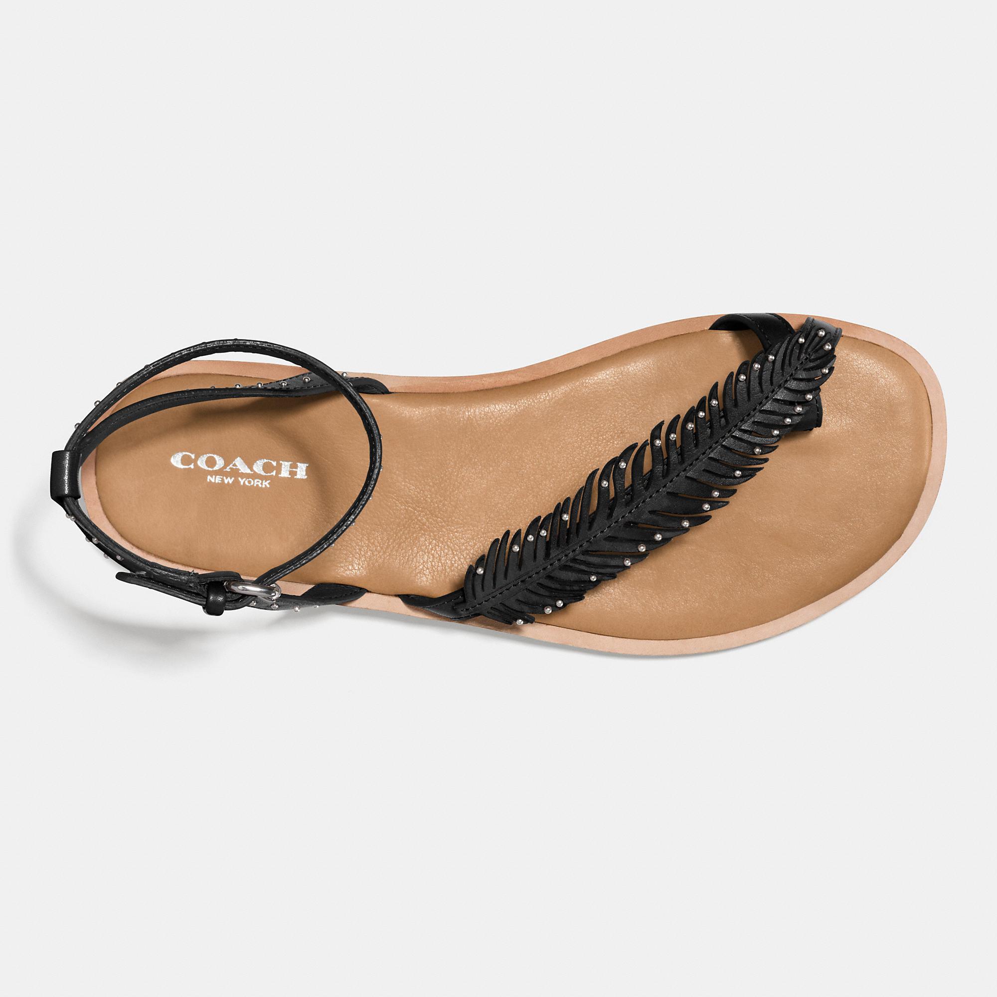 572382ae17faa1 Lyst - COACH Beach Sandal in Black