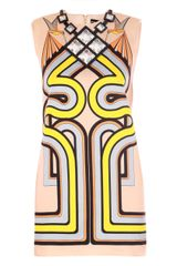 Holly Fulton Bird Eating Print Cotton Dress - Lyst