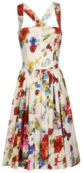 Dolce & Gabbana Butterfly-print Cotton Dress - Lyst