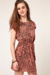 ASOS Collection Asos Skater Dress in Animal Print - Lyst