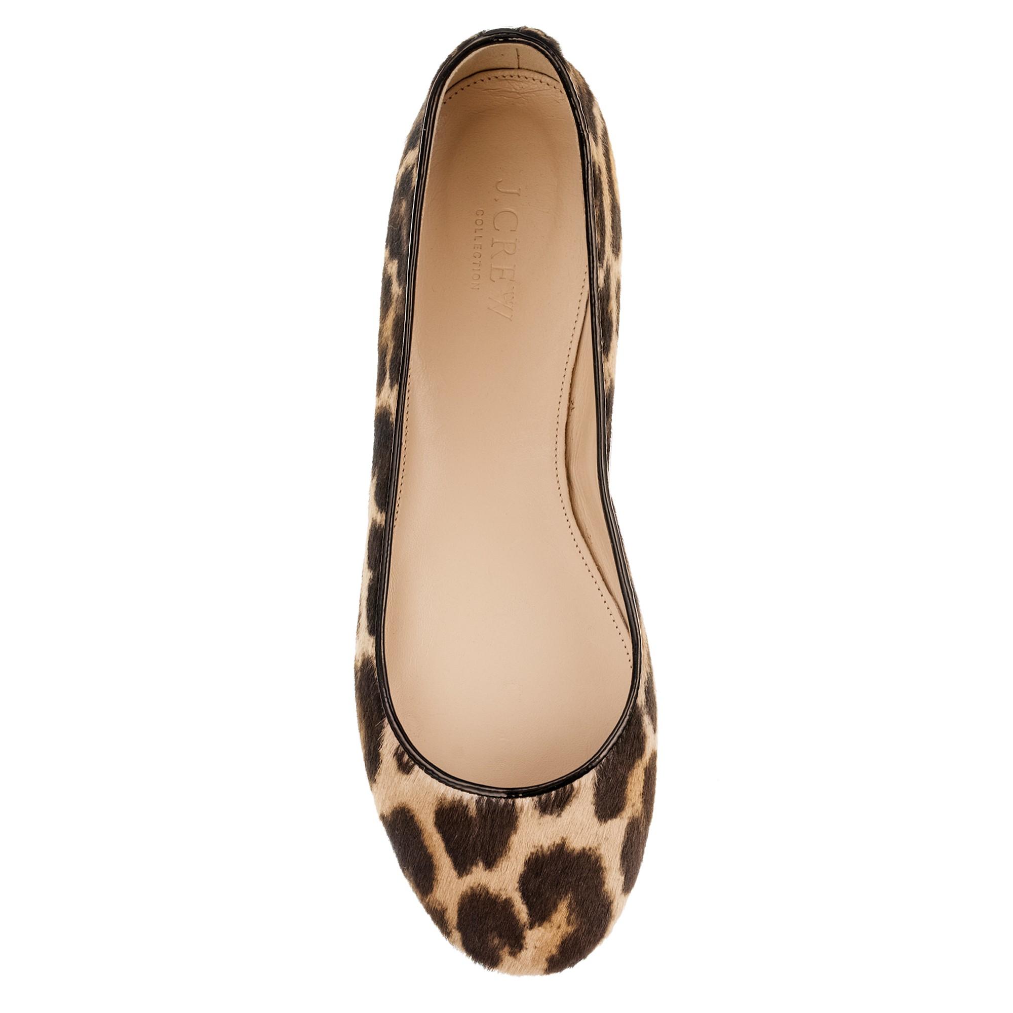 Chaussures - Ballerines Nora ukoZP