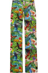 Altuzarra Redwood Tropical-print Flared Stretch Cotton-Blend Pants