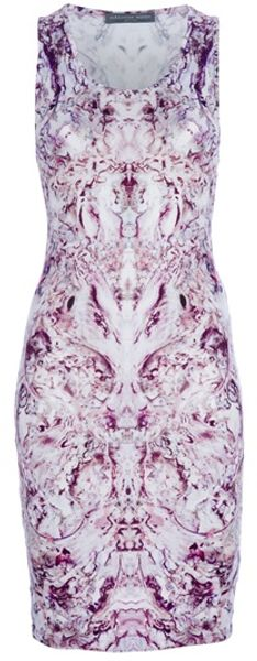 Alexander McQueen Print Dress - Lyst