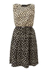Pussycat Pussycat Apple Mono print Dress - Lyst