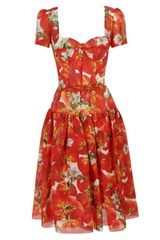 Dolce & Gabbana Tomato Printed Georgette Dress - Lyst