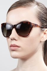 Stella McCartney Squared Cateye Sunglasses Tortoise - Lyst