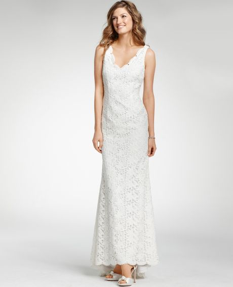 Ann taylor petite lace sleeveless wedding dress in white for Petite lace wedding dresses