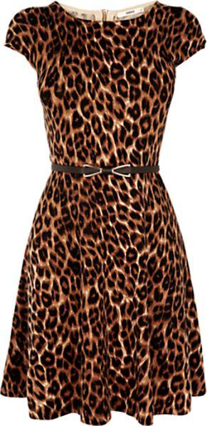 Oasis Oasis Animal Fitandflare Dress Multi in Animal