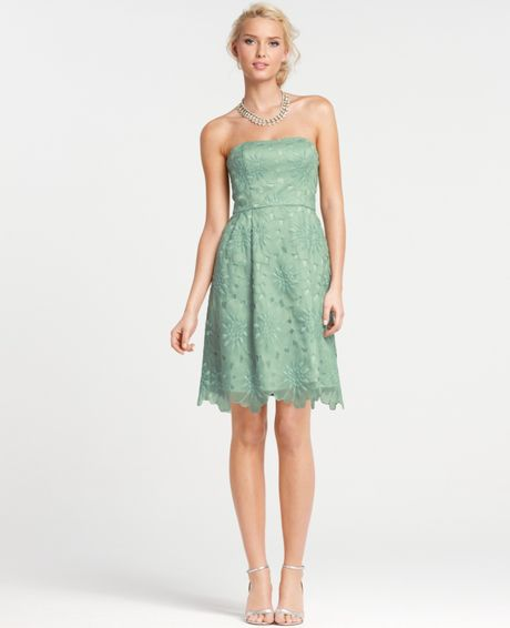 Ann taylor silk embroidered strapless bridesmaid dress in for Anne taylor wedding dress