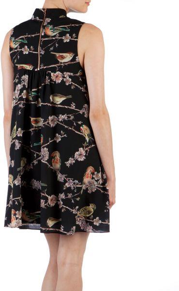 Ted Baker Ted Baker Madlin Birdie Branch Printed Dress In