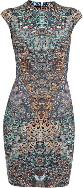 McQ by Alexander McQueen Feather Print Dress - Lyst