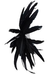 Ann Demeulemeester Feather Hairpiece