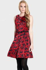 Cynthia Steffe Cadence Print Pleated Fit Flare Dress - Lyst