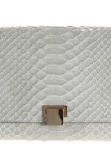 The Row Metal Frame Python Clutch - Lyst