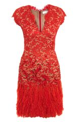 Matthew Williamson Winter Garden Lace and Feather Dress - Lyst