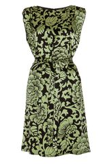 Temperley London Dianthus Shift Dress