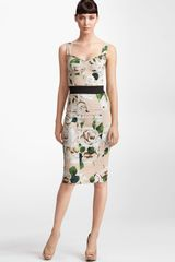 Dolce & Gabbana Rose Print Stretch Cady Dress - Lyst