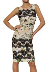 Dolce & Gabbana Lace Rose Print Viscose Cady Dress - Lyst