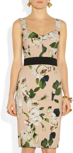 http://cdnd.lystit.com/photos/2013/01/09/dolce-gabbana-rose-roseprint-crepe-bustier-dress-product-2-5994940-132626720_large_flex.jpeg