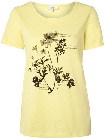 Linea Weekend Ladies Botanical Placement Floral Tee - Lyst