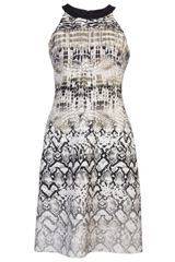 Giambattista Valli Animal Print Dress - Lyst