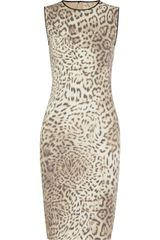 Giambattista Valli Leopardprint Stretch Cottonblend Dress