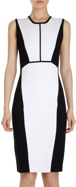 Narciso Rodriguez Bicolor Dress - Lyst
