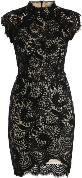 Lover Sara Lace Fitted Dress - Lyst