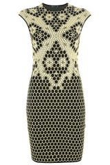 Alexander McQueen Honeycomb Bee Knit Dress - Lyst