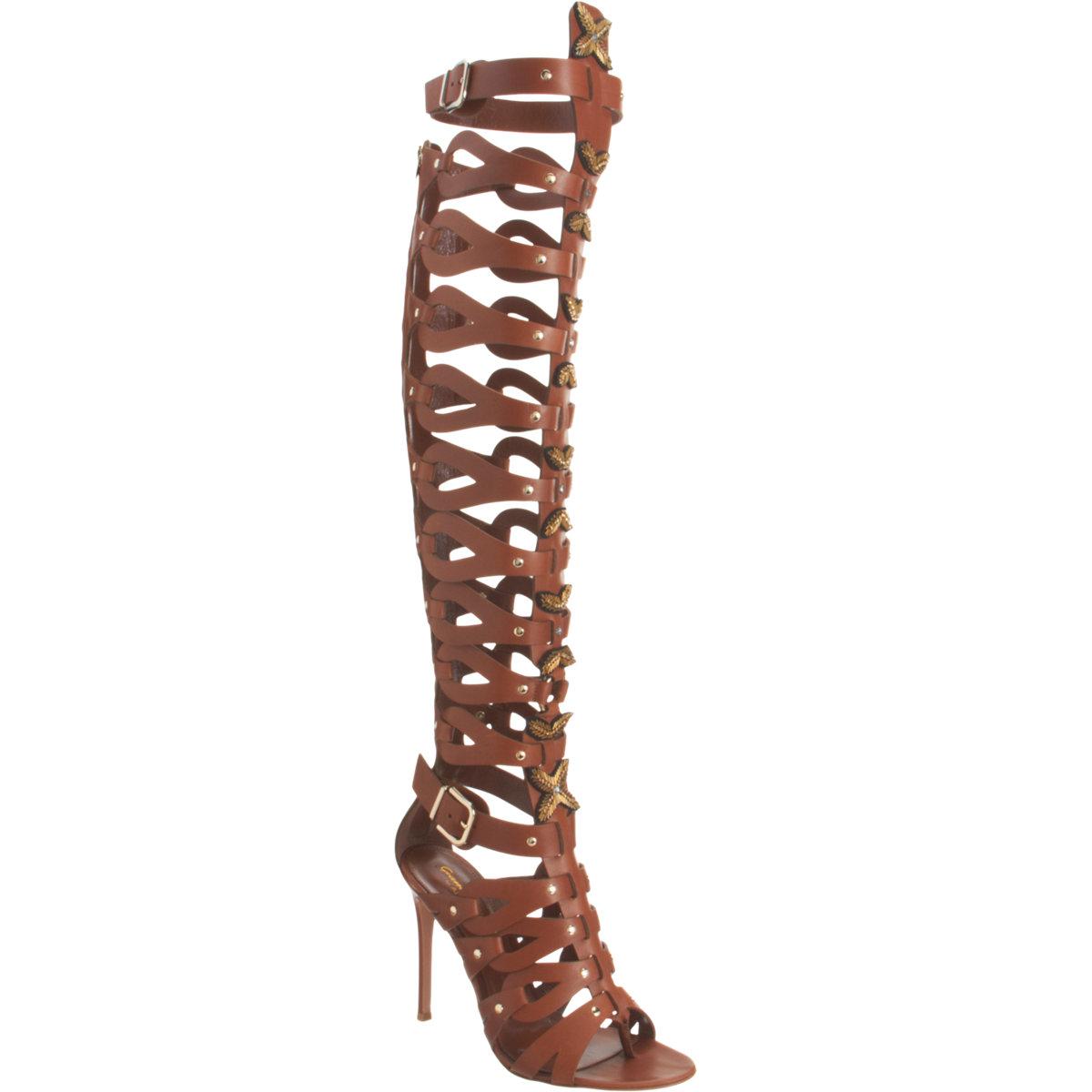 Altuzarra Knee High Gladiator Thong Sandal In Brown Gold