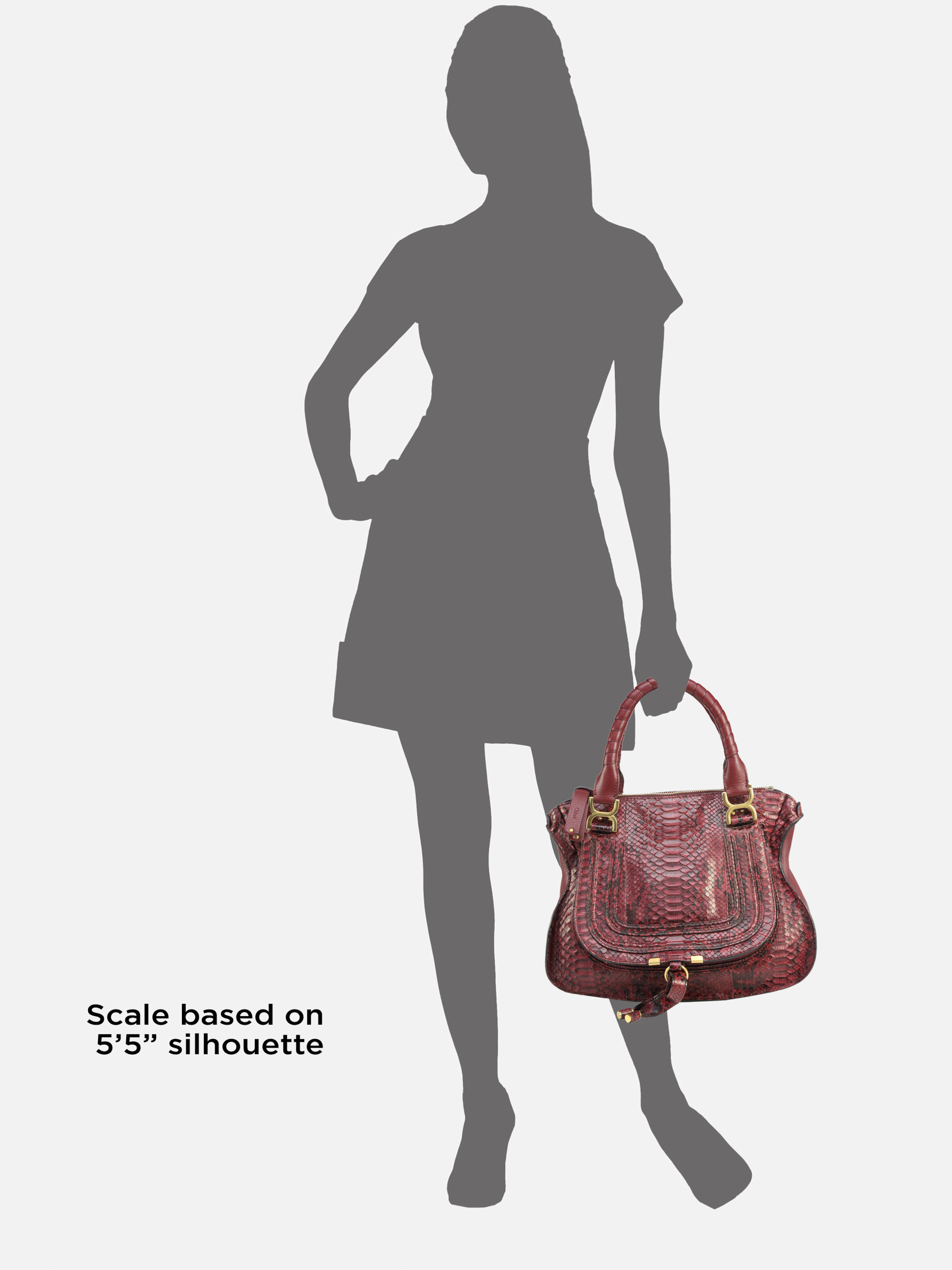 Chlo¨¦ Marcie Medium Python Shoulder Bag in Purple (black currant ...