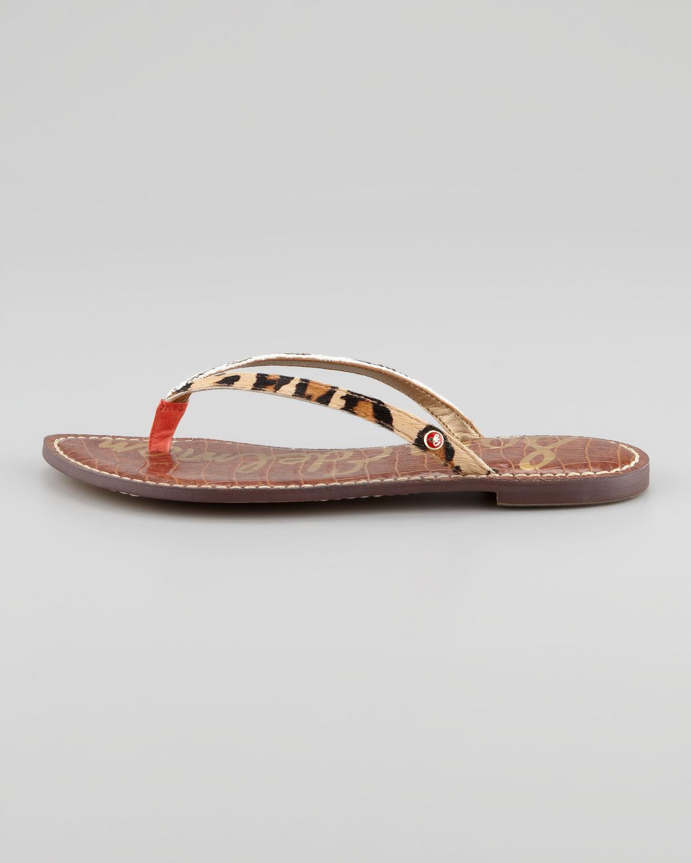 480846ad0377d Lyst - Sam Edelman Gracie Animal print Calf Hair Thong Sandal in Brown