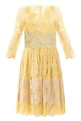 Dolce & Gabbana Lace Panel Dress - Lyst