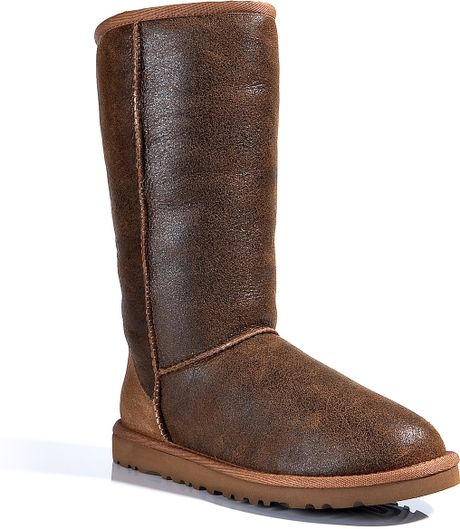 tall chestnut uggs for sale