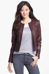 Bernardo Quilted Collarless Leather Jacket - Lyst