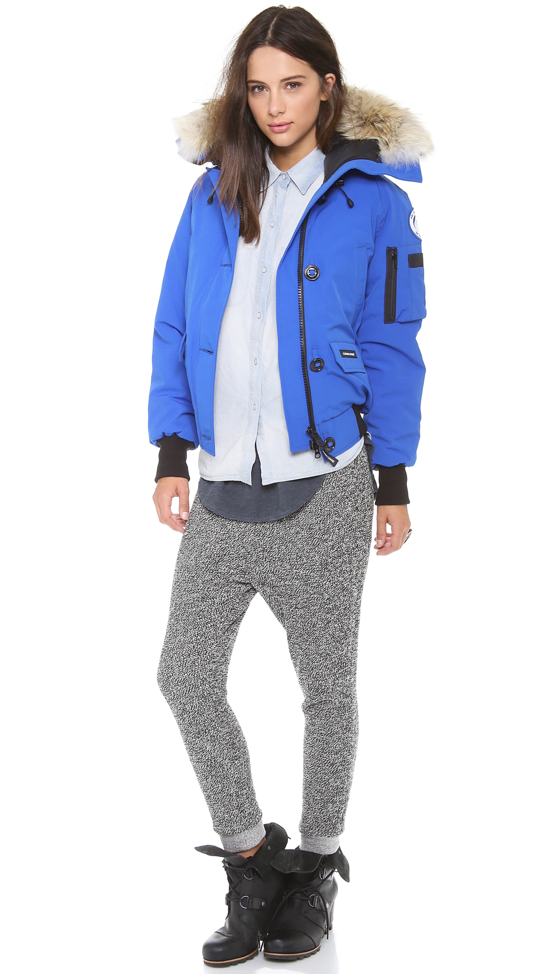 Canada Goose chilliwack parka outlet price - Canada goose Polar Bears Chilliwack Bomber Jacket - Pbi Blue in ...