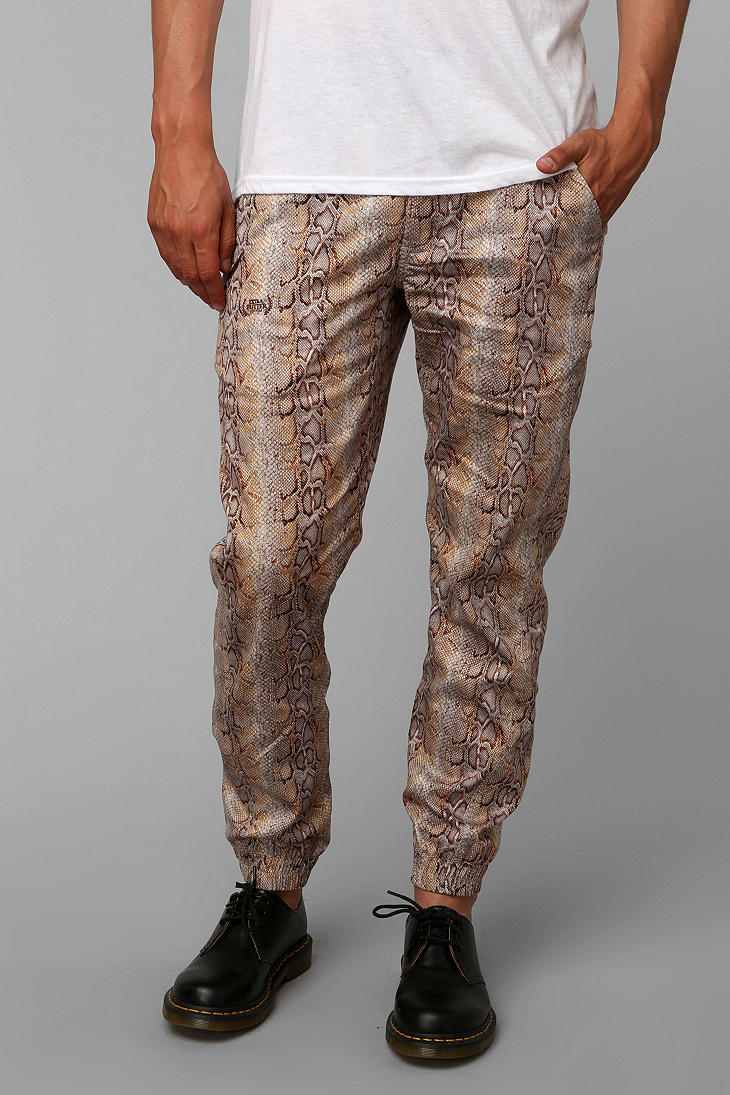 lyst urban outfitters publish year of snake jogger pant